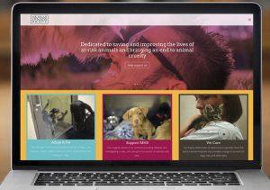Michigan Humane WordPress Website